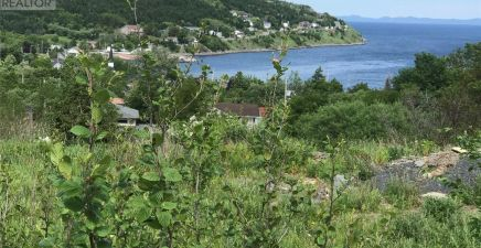 1216734, 0 Browns Road, Spaniards Bay