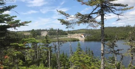 1218913, 6 Ocean Pond, Whitbourne
