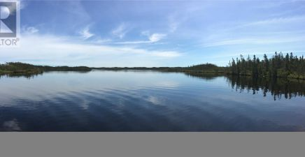 1218910, 29 Ocean Pond, Whitbourne