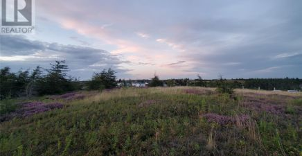 1219440, 17 Cabot Avenue, Whitbourne