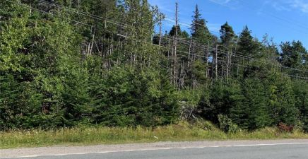 1220953, 1358-1360 Thorburn Road, Portugal Cove - St. Philips