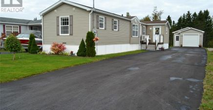 1222062, 6 Boulos Place, Deer Lake