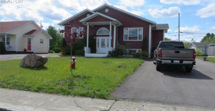 1216761, 8 Peddle Drive, Grand Falls - Windsor