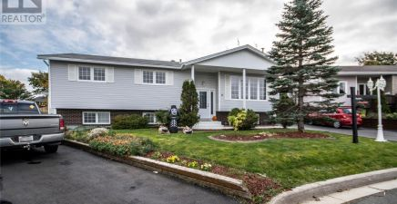 1222591, 8 Nelson Place, Mount Pearl