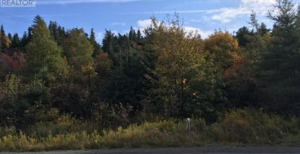 1222526, 91 New Harbour Road, Spaniards Bay