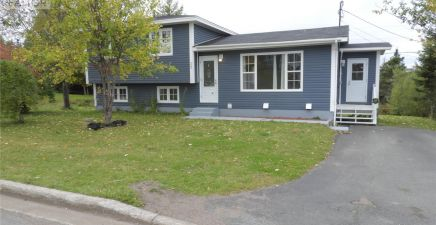 1205238, 28 Mount Vincent Crescent, Marystown